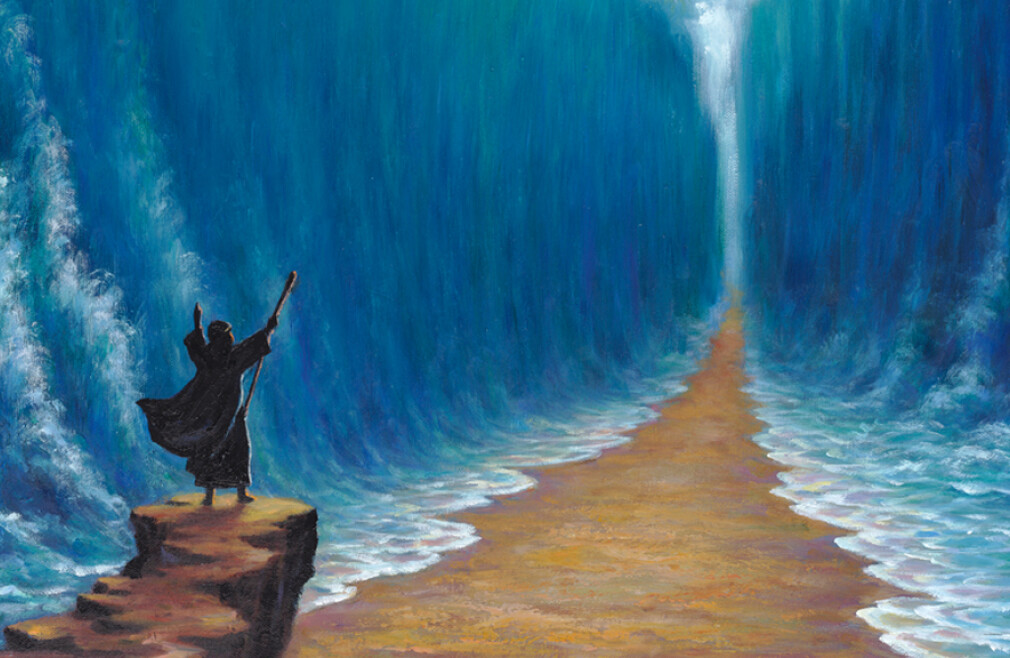 Red Sea Moments Teaching Series